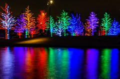 (mschout) Tags: christmas usa lights dallas texas vitruvianpark