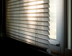 dusty blinds (270/366) (severalsnakes) Tags: da5018 missouri pentax saraspaedy sedalia blinds k30 shade window