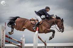 0844 ([]NEEL[]) Tags: horse concours hippique kharkiv ukraine white stable whitestable