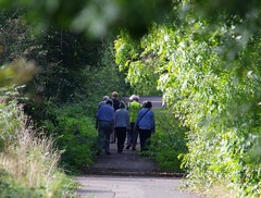 walkers (Simon Dell Photography) Tags: sheffield city uk shirebrook valley nature reserve hackenthorpe old new pictures wildlife simon dell photography bif bop bids sticks