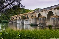 Puente sobre el Duero (cvielba) Tags: duero puebloconencanto puente zamora rio romano toro