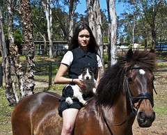Colour co-ordinated (Elise Arod) Tags: sibeliusstables countryside jackrussell terrier pets australia nsw horse pony rider riding