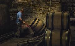 moving (charlesgyoung) Tags: cotedebeaune france burgundy wine winecellar charlesyoung nikonfx nikon d810 vikingrivercruise travelphotography barrels
