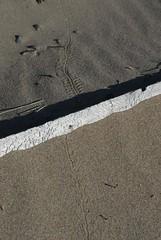DSG_7363 Footprints in the sand (Greying_Geezer) Tags: 2016 hazelbird ncc natureconservancyofcanada hamiltontownship ort hiking naturereserves