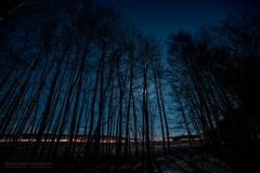 Silhouettes of Tnsberg (Normann Photography) Tags: frodesen kjellekrysset semslinna slottsfjell contour longexposure moon moonlight shadowplay shadows silhouettes stars supermoon vestfold norge no
