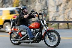 Harley-Davidson 1610165046w (gparet) Tags: bearmountain bridge road scenic overlook motorcycle motorcycles goattrail goatpath windingroad curves twisties
