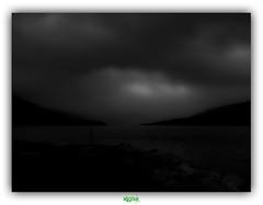 ALL CATS ARE GREY (rgisa) Tags: loch lake dark noir sombre grey thecure cosse scotland ullapool broom