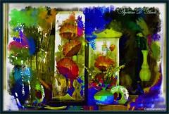 Articoli da regalo... in vetrina - Novembre-2016 (agostinodascoli) Tags: vetrina articolidaregalo nikon nikkor cianciana sicilia colore fullcolor art agostinodascoli digitalart digitalpainting digitalgraph photoshop photopainting piante fiori vasi texture