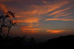 (Jelena1) Tags: sky nebo ciel cielo himmel cloud clouds oblak oblaci nubes nuages wolken moln sunset sundown zalazaksunca ocaso coucherdusoleil solnedgng sonnenuntergang silhouette silueta silhuett trees drvece baum trd zapadnasrbija westernserbia serbia srbija balkans canon canon600d canoneos600d canonefs1855mmf3556is