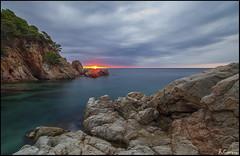 En el punto de fuga. (antoniocamero21) Tags: marina amanecer foto color sony agua rocas mar árboles cielo sol morisca cala tossa girona catalunya brava costa