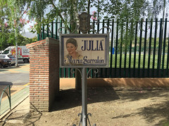 cartel-julia