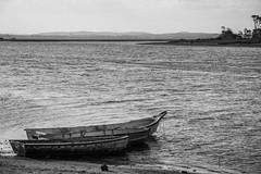 Botes (Willysancarlos) Tags: blancoynegro bn botes arroyo maldonado uruguay paisajescosteros