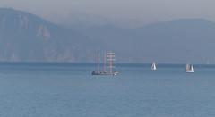 """mare di Liguria - la """"nave scuola Pogoria"""" in transito       (explored) (Carla@) Tags: liguria italia europa sailingvessel naviscuola stspogoria mfcc supershot coth thesunshinegroup canon coth5 sunrays5"""