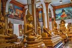 Inside Wat Chalong, Phuket, Thailand (Ld\/) Tags: watchalong buddha phuket thailande thailand temple novembre november 2016 holiday quiet respect culte repos vacance