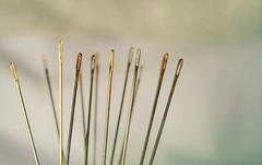 needles (Ayeshadows) Tags: needles golden silver close up