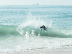 seal5 (David Behar) Tags: seal beach california skimboarding