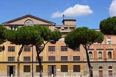 Roman Street V (Erik Schepers) Tags: street rome roman italy italia tiber trees blue sky police station circus maximus travel trip building architecture