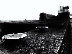 Nailed It (Burnt Umber) Tags: fauxtography phonetography samsung galaxy s6 digitalisthedevil goldcoastrailwaymuseum miami florida rpilla001 copyrightallrightsreserved pullman train locomotive break pnuematic wheel steel engine electric diesel steam boiler motor powerplant industrial power pipes valves luggage cart carriage boxcar railway goldcoastrailroadmuseum tracks travel navalairstation richmond urbex flurbex ue urban explorer