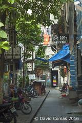 Hanoi - Old Quarter - Night Market (CATDvd) Tags: august2016 catdvd cnghaxhichnghavitnam davidcomas hanoi httpwwwdavidcomasnet httpwwwflickrcomphotoscatdvd hni market mercado mercadonocturno mercat mercatnocturn nightmarket nikond70s oldquarter repblicasocialistadevietnam repblicasocialistadelvietnam socialistrepublicofvietnam vietnam vitnam