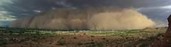 jul 21 monsoon 10 (otakupun) Tags: storm phoenix desert monsoon dust haboob