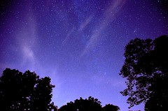 Night time Retreat (robertd_herrera) Tags: trees night stars twinkle