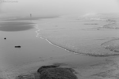Líneas - de José Emilio Gómez (O POTIÑOS) Tags: mar playa galicia niebla atlantico baroña playadebaroña