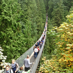 capilano-suspension-bridge-vancouver-2