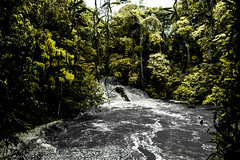 Abundncia (Felipe Valim Fotografia) Tags: foto vale viagem ribeira valedoribeira ilhacomprida cavernadodiabo cajati caneneia