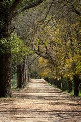 El Durazno (cuiti78) Tags: argentina el cordoba durazno