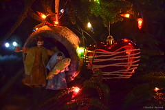 Feliz Natal! Feliz Navidad! Bon Nadal! Buon Natale! Merry Christmas! Joyeux Noel! Frohe Weihnacht! Merii Kurisumasu! GELUKKIG KERSTFEEST! Sarbatori Fericite! Srozhdestvom Kristovym!Sretan Božić! ... (* Cláudia Helena * brincadeira de papel *) Tags: christmas light brazil love luz brasil natal peace amor jesus paz papermache papelmache cláudiahelena