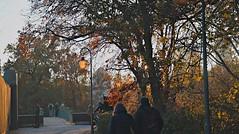 20161112_152929_HDR (uweschami) Tags: berlin mitte stadtmitte waschmaschine bundespresidialamt bundeskanzleramt siegessule tiergarten park monument spree hauptbahnhof