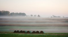 Lines and fog (Mulewings~) Tags: ontheridge tigenroad foggymorning fogsunrise on1 bales cropland cropstrips