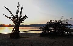 DrowningRefugee02 (PuraVida Photo) Tags: refugee washingtondc alexandria art virginia potomacriver sunrise dawn driftwood installationsculpture