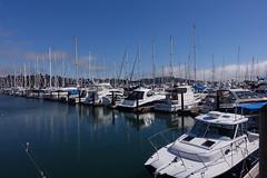 Sausalito Marina (mlcastle) Tags: california sanfrancisco sf sausalito marin marina boat boats