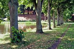 Stadtpark Emden (hansottoschttle) Tags: gold200