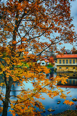 By the river (Joni Mansikka) Tags: autumn nature tree maple leaves foliage branches buildings river riverside ambience outdoor hydroelectric noormarkunjoki noormarkku suomi finland canonef2870mmf3545ii