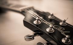 Gitarre (nyzpic) Tags: gitarre guitar epiphone les pauls standard model humbucker mechanics music musik rock lumix panasonic instrument