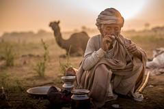 L1002840.jpg (Bharat Valia) Tags: pushkarfair bharatvalia desert rajasthanportraits bharatvaliagmailcom sheperd pushkarimages pushkarmela festivalsofindia camel pushkarcamelfair pushkar