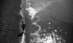 Wet Feet (4foot2) Tags: brighton seaside sea seafront beach brightonbeach lookingdown brightonpier palacepier pier water candid reportagephotography reportage people peoplewatching peopleofbrighton interestingpeople analogue film filmphotography 35mmfilm 35mm 35mmf35 35mmf35summaron summaron leica leica111 1932 1932leica rangefinder polypanf standdevelop kodak hc110 bw blackandwhite monochrome mono 2016 fourfoottwo 4foot2flickr 4foot2photostream 4foot2