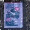 Présent (Gerard Hermand) Tags: 1610164857 gerardhermand france paris canon eos5dmarkii formatcarré œuvre art artwork fleur flower vitre pane verre glass