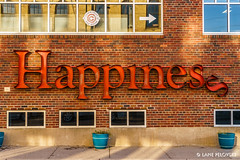 Happiness (lpvisuals.com) Tags: 2016 a7 mississippi broadway city colors fall fallcolors fullframe minneapolis minnesota orange reflection seasons skyline sony trees twincities urban