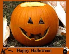 Aww Nuts! (ChicaD58) Tags: dscf5615c happyhalloween pumpkin carvedpumpkin corn treats happyface nuts pecans almonds indiancorn peanuts backyard fall autumn walnuts