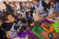 """Alumnos de instituciones de educación inicial y preescolar participaron en diversas actividades lúdicas con motivo de las festividades de """"Todos Santos"""" y con ello prevalecer las tradiciones de la entidad"""