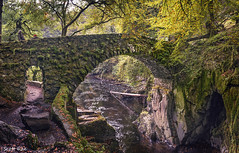 Bridge at The Hermitage, Dunkeld (Scotty Rae) Tags: hermitage dunkeld bridge moss river rocks trees autumn fall path photographers perthshire