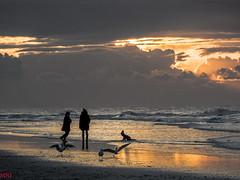 Tomber dans les vagues. (MRI2009) Tags: merdunord mer plage ctebelge nieuwpoort coucherdesoleil