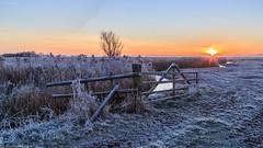 Polder Arkemheen 2, winter, 041216