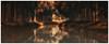 Autumn illusion (Eric@focus) Tags: autumn impression notreal fake colorefexpro4 fall effect filter manipulated phototakeninsummer googlenik viveza raw schipdonkkanaal illusion mundusvultdecipiergodecipiatur creativewithsoftware fooled spielerei fun canal greatphotographers soe vividstriking pinnaclephotography wow wowl2