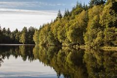 Speechhouse Lake-0514 (WendyCoops224) Tags: 24105mml 600d forestofdean speechhouse canon eos ©wendycooper