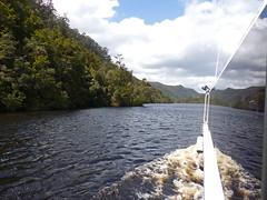 P1110289-Pieman Cruise-A (elisabethgleave) Tags: piemanriver cruiseboat rainforest riverbank
