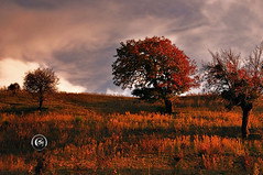 Solitudine (* landscape photographer *) Tags: noepoli potenzalucania italy landscape paesaggio tramonto sunset photographer nikon nikkor clouds nuvole colori colors flicker 2016 salvyitaly sa sasi salvo